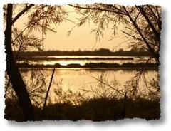 laguna di Caorle, area DOC Lison Pramaggiore sul mare